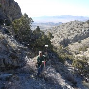 Relief Canyon Environmental & Cultural Survey Limits Staking
